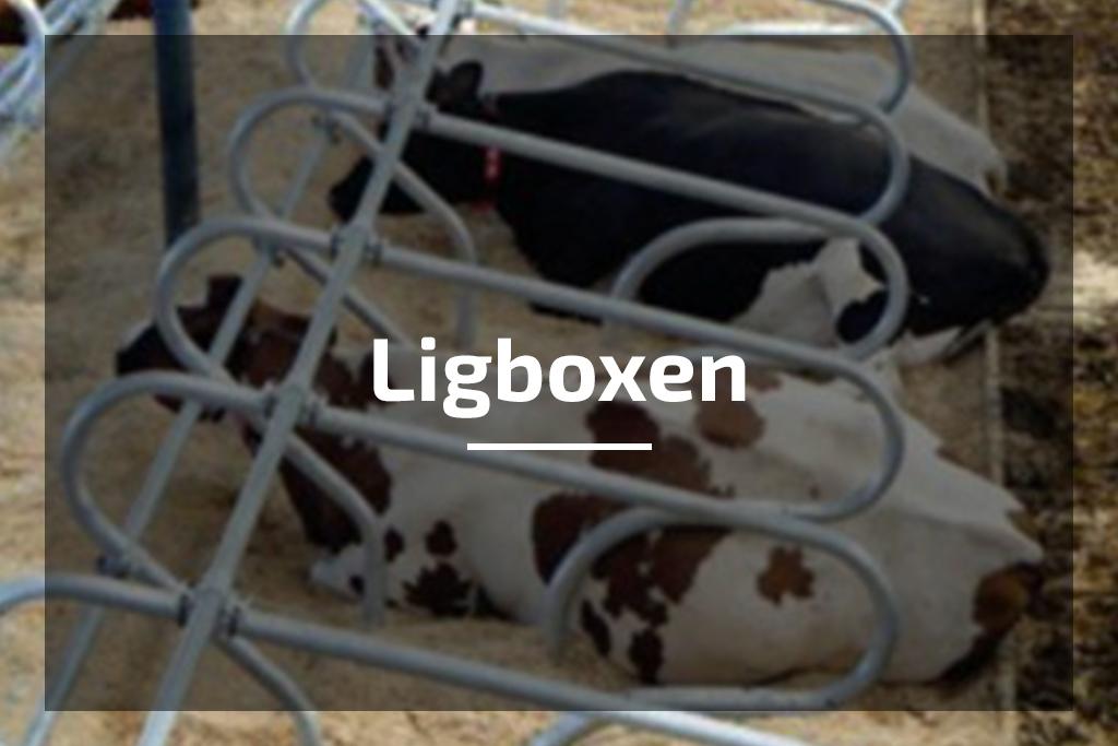 Temmink Agro Producten Gietvloer en coatingvloer troffelvloer ligboxen