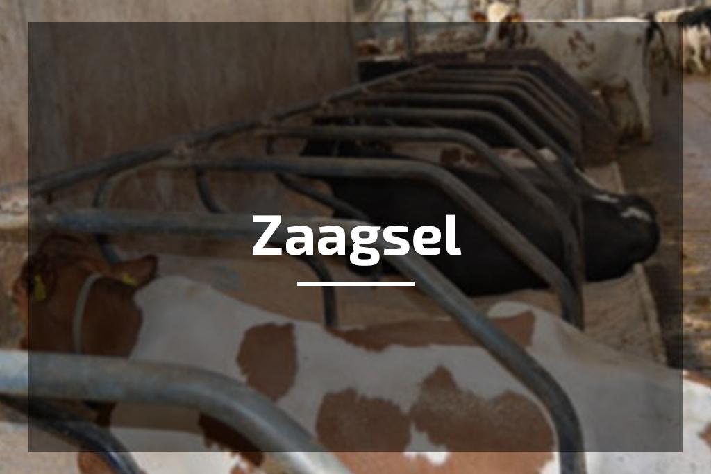 Temmink Agro Producten Vlas bodembedekking kopen Afbeelding van Zaagsel. Zaagsel bodembedekking kopen kijk dan op deze pagina.